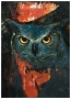 Experimental Owl